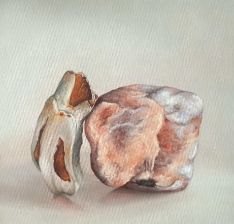 """Horse Tooth, Pink Stone"" Oil on canvas 15 x 15 cm"