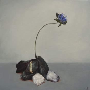 """Resilience"" Oil on canvas 30 x 30 cm"